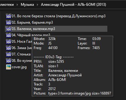 MP3-Info Extension - вид всплывающей подсказки